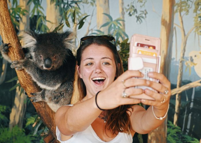 Melbourne-Gap-Year-Oz-Paid-Work-Grabatour-Travel-Working-Holiday-Koala-Selfie-Mauru-Phillip-Island-Welcome-To-Travel-Melbourne