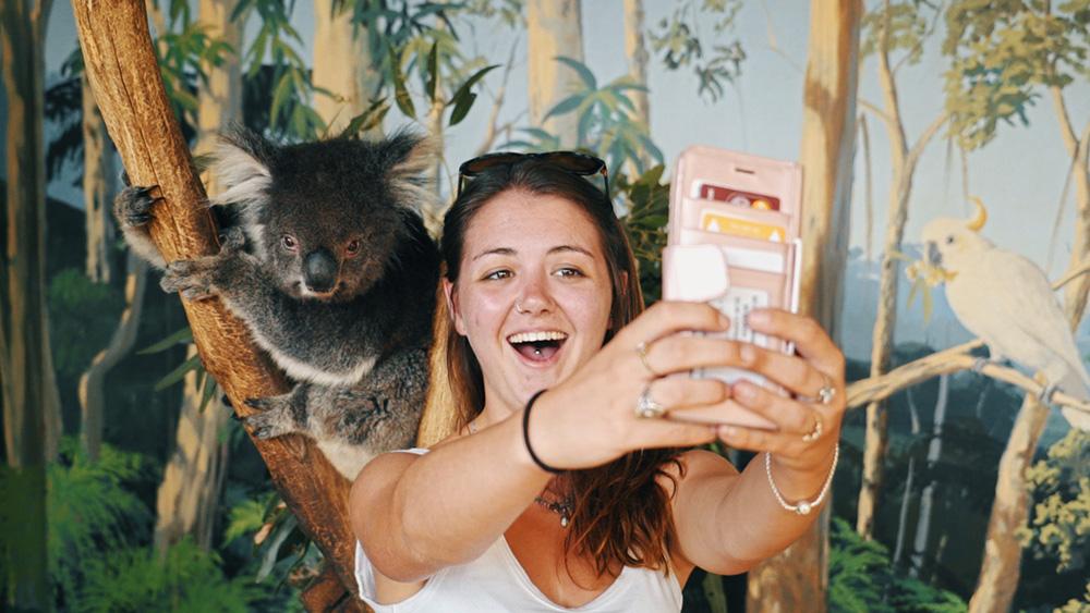 Melbourne-Gap-Year-Oz-Paid-Work-Grabatour-Travel-Working-Holiday-Koala-Selfie-Mauru-Phillip-Island-Welcome-To-Travel-Melbourne
