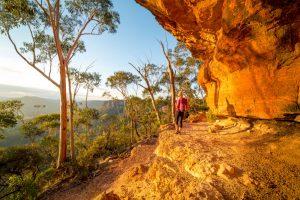 Blue-Mountains-Hike-Traveller-Sydney-New-South-Wales-Australia-Central-Coast-Road-Trip-Port-Stephens-Surfing-Sand-Dune-Sydney-Gap-Year-Adventure-Tour-Australia-Road-Trip-Grabatour-Travel